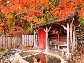 日本屈指の紅葉露天風呂が100円!塩原温泉「もみじの湯」で絶景の紅葉狩り|栃木県|トラベルjp<たびねす>
