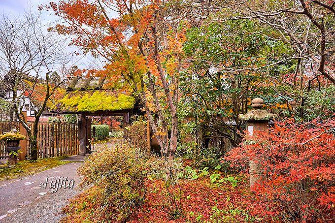 紅葉に彩られた門の中は宿泊者専用!湯布院御三家「亀の井別荘」