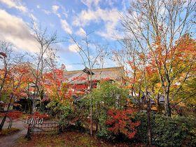 湯布院で紅葉狩り!御三家「亀の井別荘」日帰りで満喫する3つのポイント|大分県|トラベルjp<たびねす>