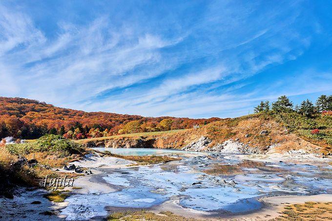 後生掛自然研究路「大湯沼」の紅葉