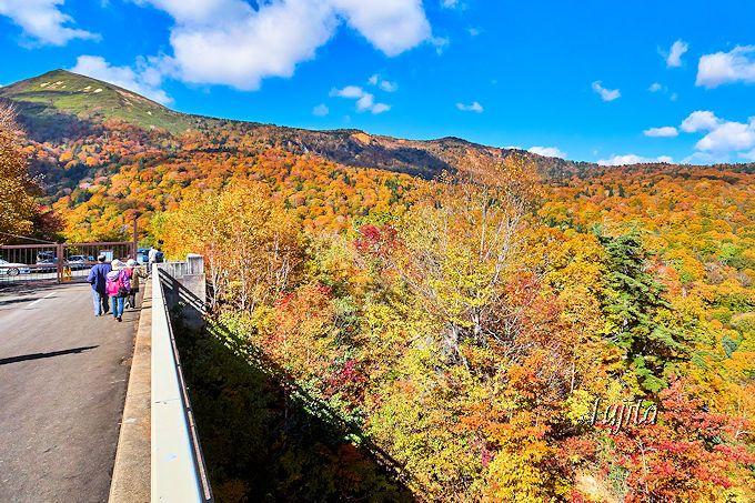 松川渓谷の紅葉第4位!「松川大橋」から周辺の紅葉を一望