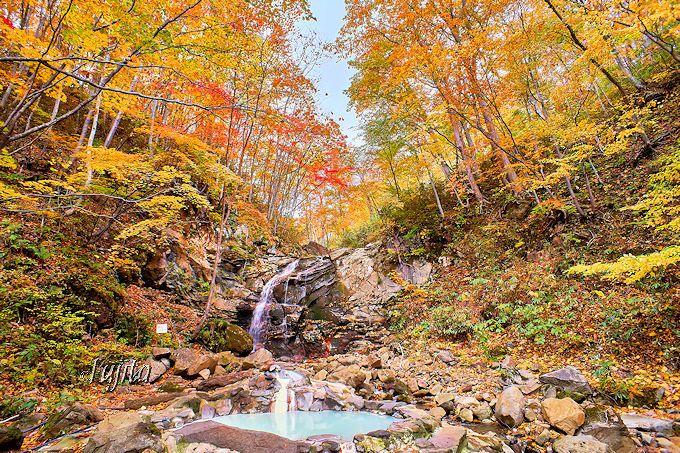 紅葉に包まれた網張温泉「仙女の湯」