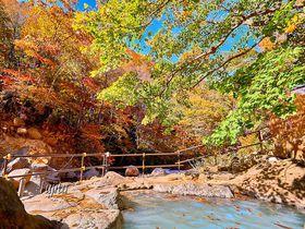 紅葉狩りに最適な秘湯!山形・滑川温泉「福島屋」の絶景露天風呂|山形県|トラベルjp<たびねす>