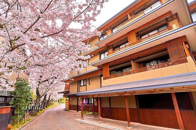 京都・嵐山温泉「花伝抄」は桜の花見を満喫出来る和風ホテル