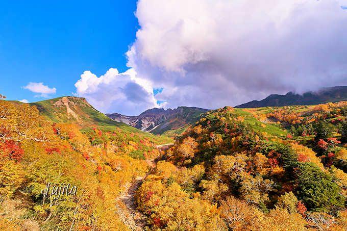 日本一早い紅葉に車で行こう!北海道・十勝岳温泉で紅葉狩り