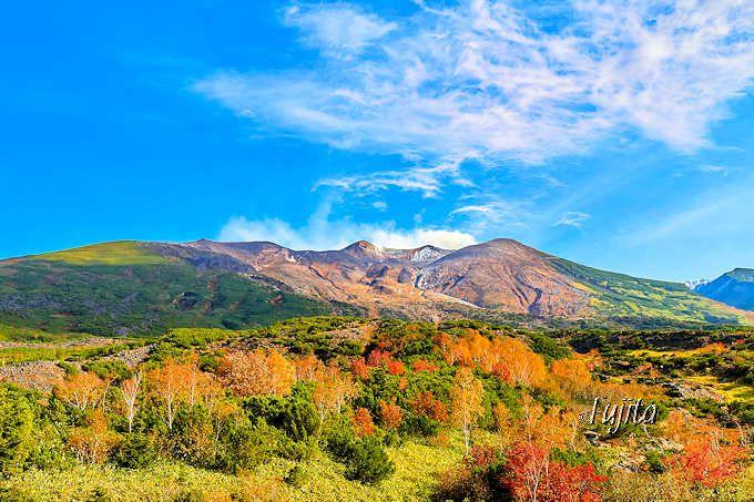 十勝岳望岳台で紅葉狩り!北海道・大雪山系の山々と紅葉がコラボ