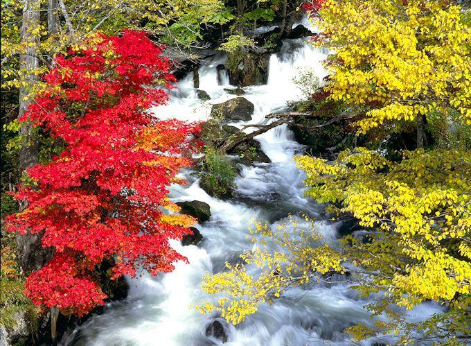 阿寒湖温泉で紅葉狩り!北海道・オンネトーと滝見橋の紅葉は必見