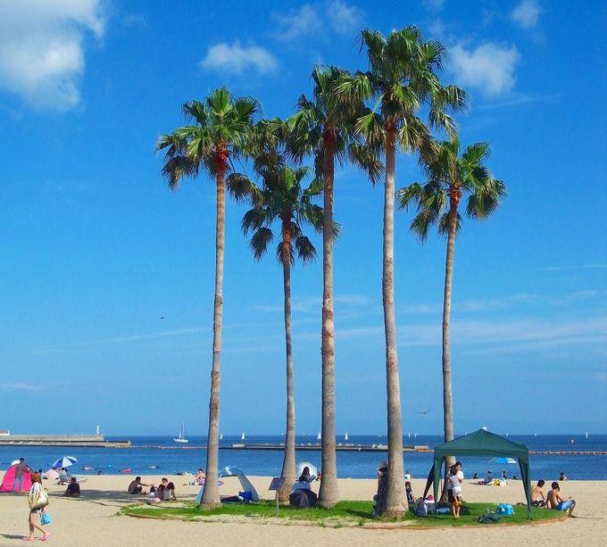 関西随一の砂浜、須磨海岸を歩く!