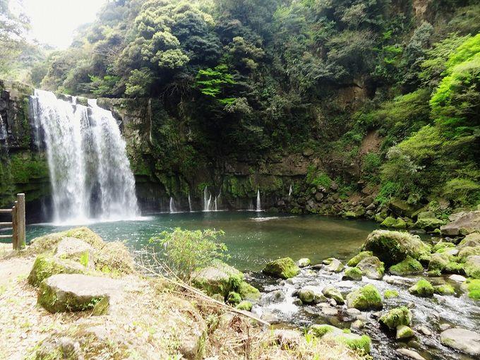 落差25m、幅35mの県内屈指の大滝を一人占めする贅沢