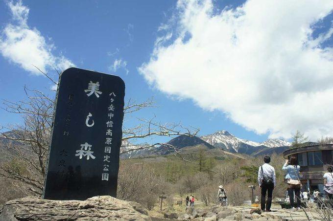 天気快晴!南アルプス、八ヶ岳、富士山をバス車窓から楽しみながら清里へ向かう贅沢旅。