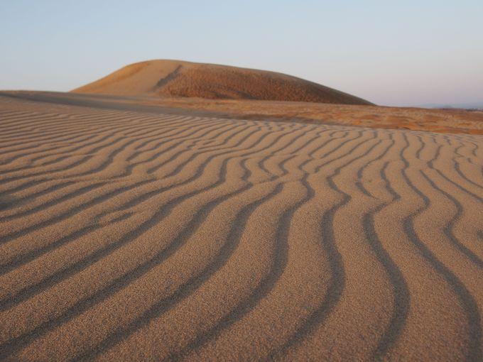 まずは鳥取の代名詞「鳥取砂丘」