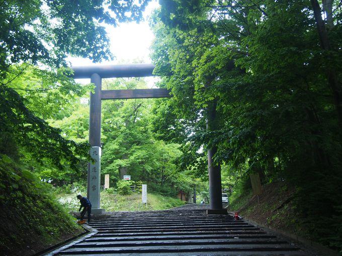 いざ、北海道神宮の境内へ!