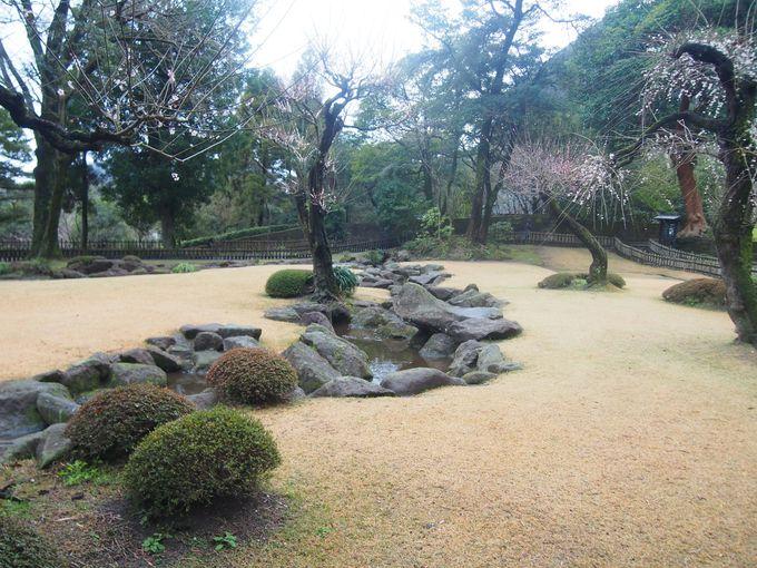 たおやかな美しさ「曲水の庭」