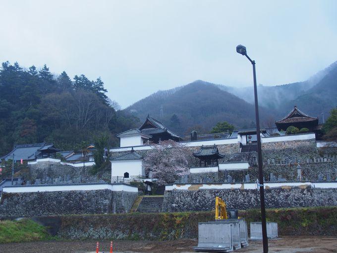 とことん城に近い「松連寺」