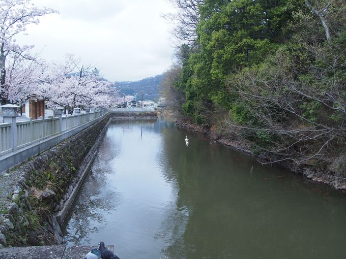 水堀と躑躅ヶ崎館の特徴