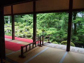 仏教音楽が伝わる比叡西麓の幽邃境で愉しむ名庭~京都大原~|京都府|トラベルjp<たびねす>