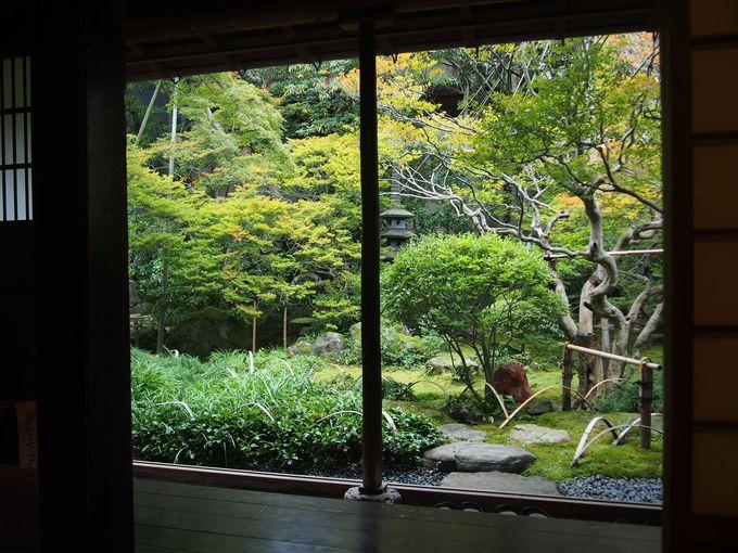 柔らかな緑と枯れ池の庭「寺島蔵人邸」