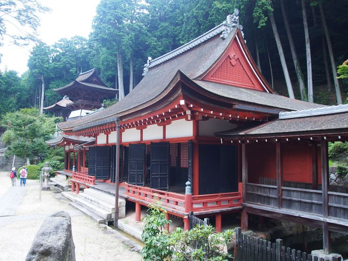 疎垂木と舟肘木が気になる「三仏堂と護法権現社拝殿」