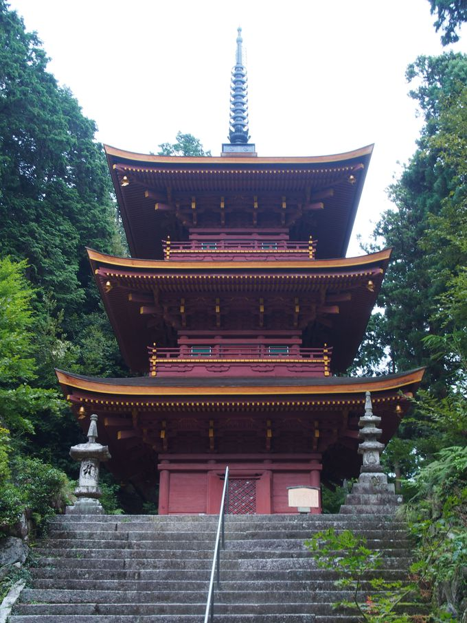 堂々とした佇まいの「三重塔と本堂」
