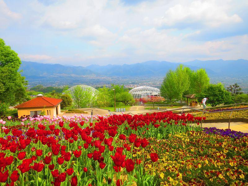 天空の楽園!『笛吹川フルーツ公園』で甲府盆地と南アルプスの絶景を眺める!