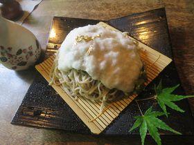 まるでお蕎麦が雪化粧!安曇野「時遊庵 あさかわ」の雪花ざるそばが美しすぎる|長野県|トラベルjp<たびねす>