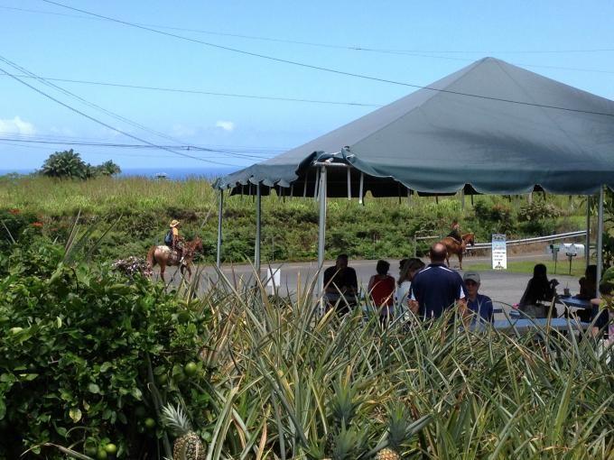 非日常的な風景がハワイ流?