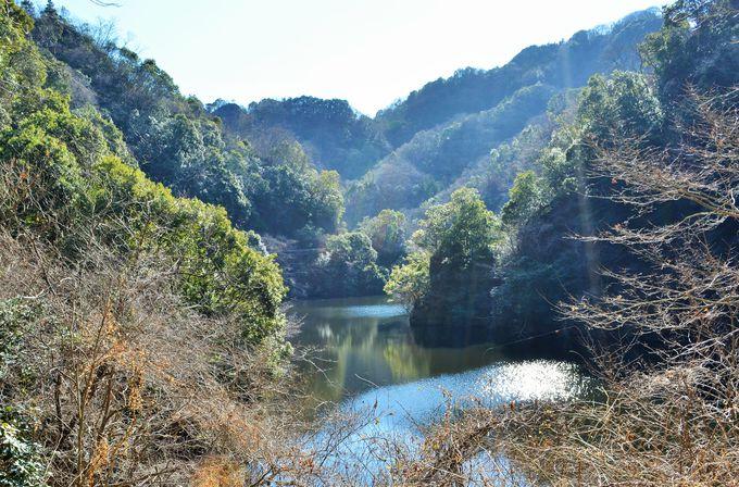 7.竜神峡