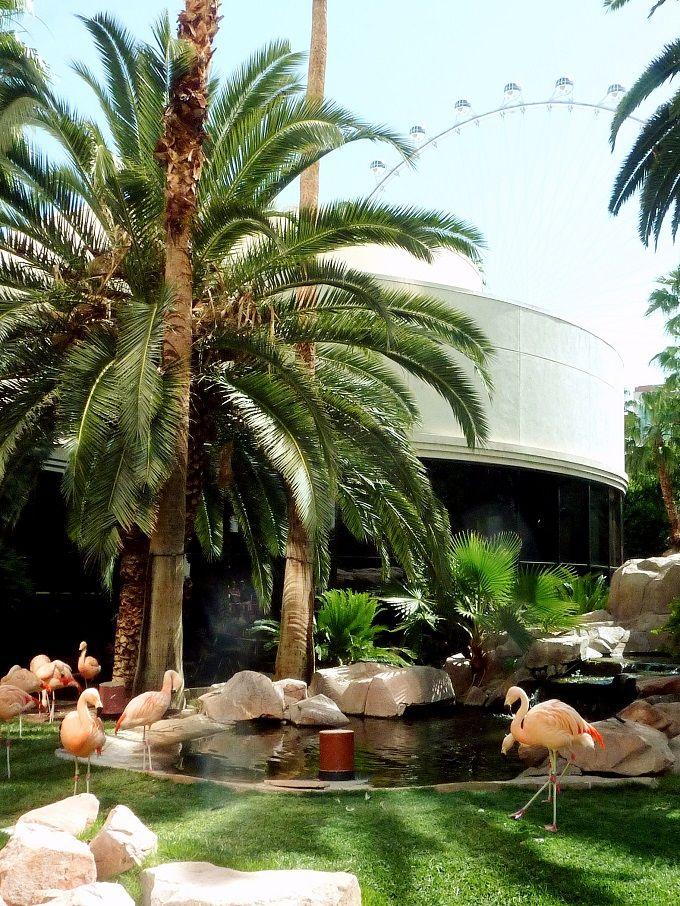 鳥の楽園「フラミンゴ」はピンクがキュートなホテル