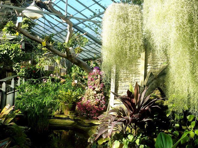 美しい花の展示にうっとり「アラン温室庭園」