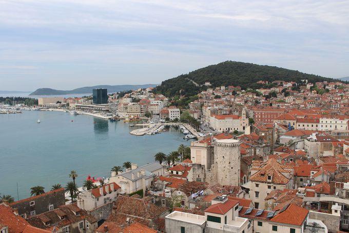 大聖堂の鐘楼から町全体を眺めよう!
