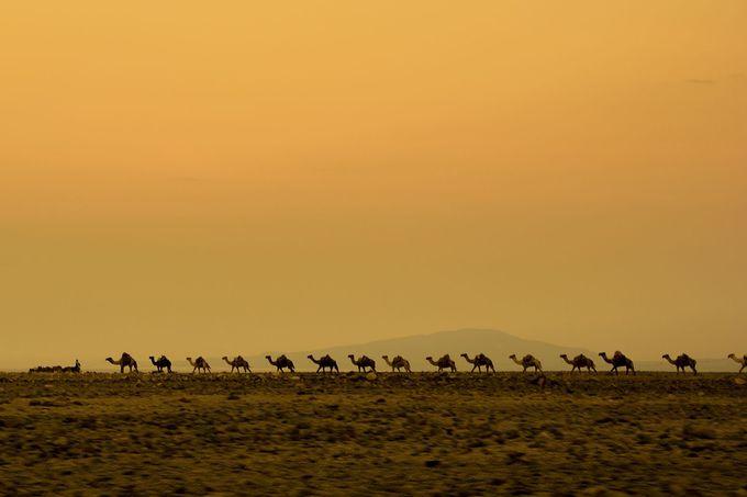 世界一過酷な土地「ダナキル砂漠」