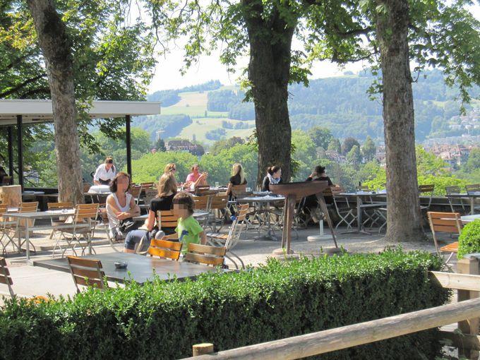 公園内の絶景を楽しめるカフェ・レストランもオススメ!
