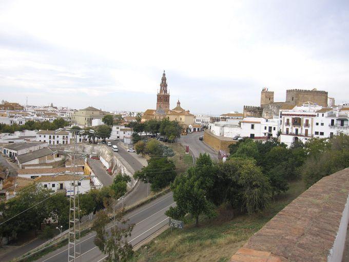 ローマ橋から眺めるコルドバの町