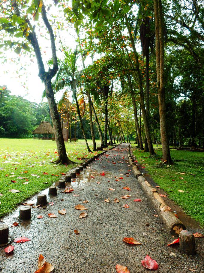 自然豊かな遺跡公園