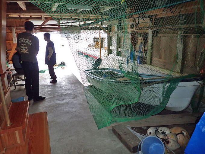 舟屋発着の海上タクシーなら舟屋の中も見学できる