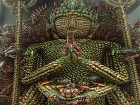 2万匹の甲虫が全身を覆い尽くす!群馬県「昆虫千手観音」の昆虫曼荼羅の世界|群馬県|トラベルjp<たびねす>