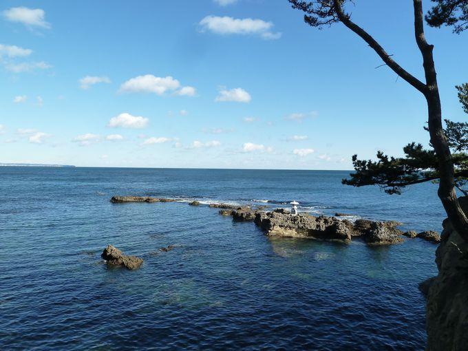 近代日本美術の礎を築いた岡倉天心も愛した五浦海岸