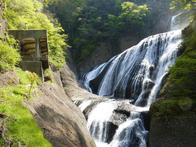 袋田の滝を満喫した後は吊り橋を渡って周辺を散策