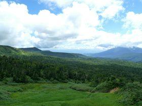 東北屈指の山岳道路!岩手・八幡平アスピーテラインで楽しむ絶景ドライブの旅|岩手県|トラベルjp<たびねす>