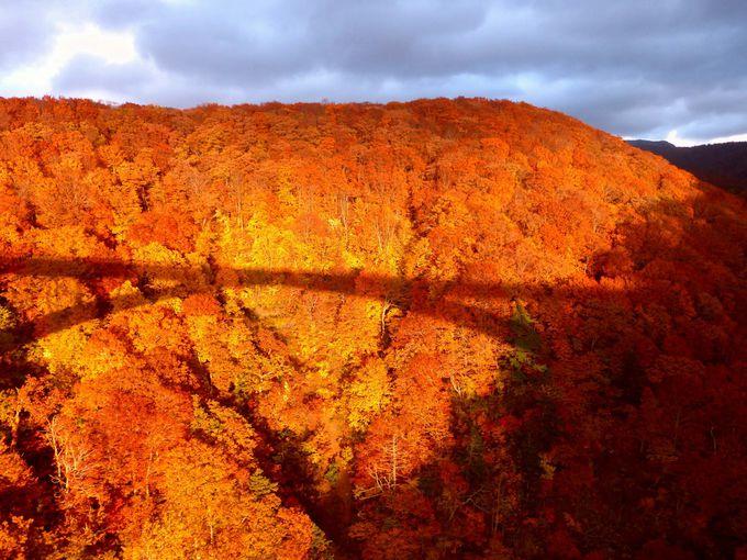 城ヶ倉大橋の紅葉は夕焼けの時間帯がおススメ!