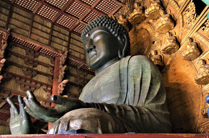 手には水かき!「東大寺」「奈良の大仏」を大人目線で観光