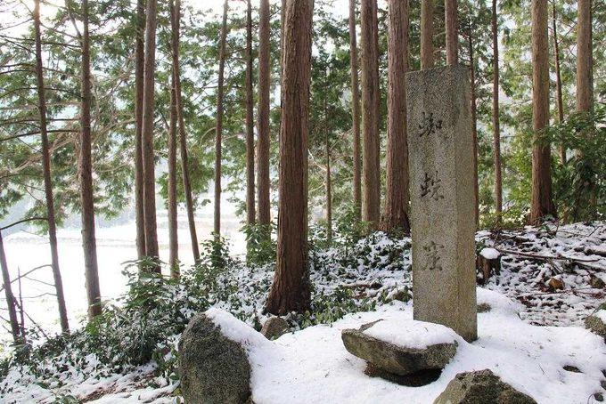 樹林に囲まれた『蜘蛛窟』の石碑