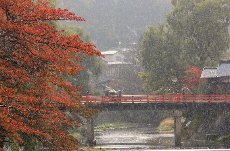 """紅葉にちらつく小雪〜情緒たっぷりの""""飛騨の小京都""""飛騨高山"""