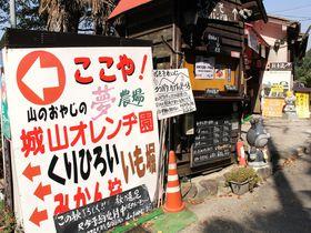 大阪でケガ人続出!?山のおやじの夢農場「城山オレンヂ園」はここや!
