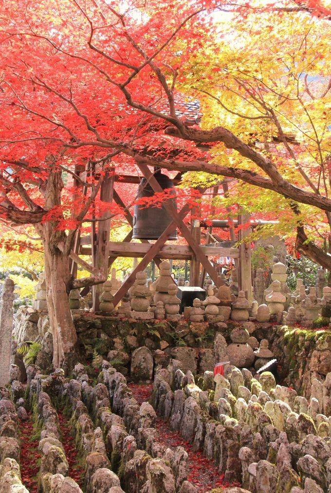 無縁仏の悲しみ癒す色鮮やかな紅葉【化野念仏寺】