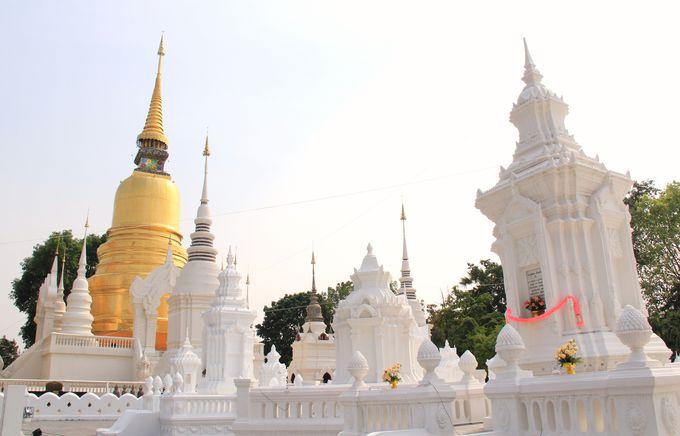 第4位 白い花園の寺院 夕暮れ時も美しい!【ワット・スアン・ドーク】