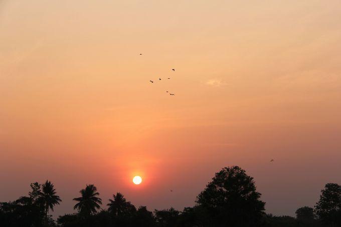 昇る朝日が深夜特急を照らし出す。新しい旅の始まりの予感