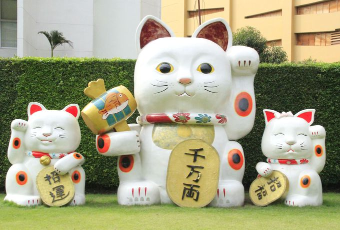 すべての福を融合!世界最強の「招き猫」