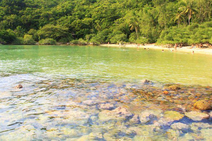 何もない無人島!色鮮やかな魚とサンゴが生息する楽園