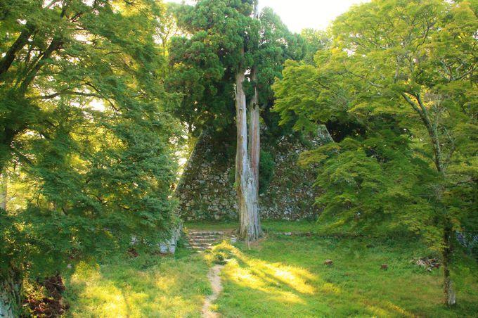 心霊スポットでも知られる日本最大の山城『高取城』(奈良県高取町)